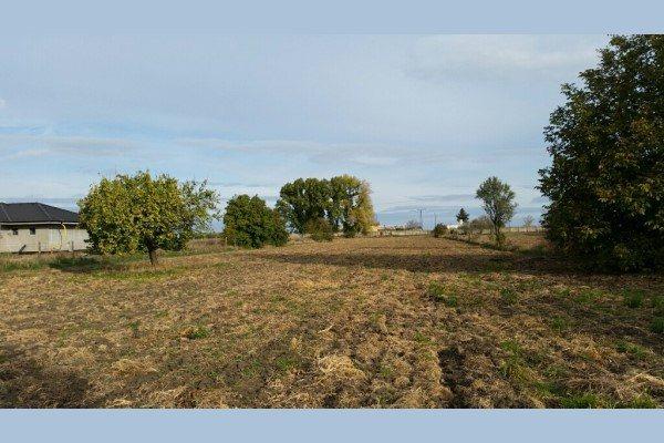 Trnavská cesta - na predaj lukratívny pozemok o výmere 9873m2 - Stavebný pozemok - Predaj