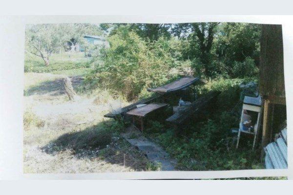 Predáme záhradu Pod Hrádzou aj s unimobunkou na 4,61á pozemku - Poľnohospodársky pozemok - Predaj